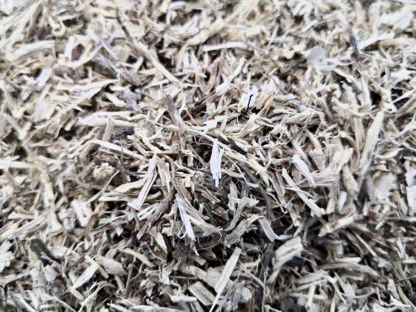 nettle root closeup