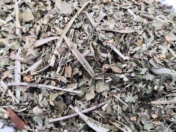 degu leaf mix close up